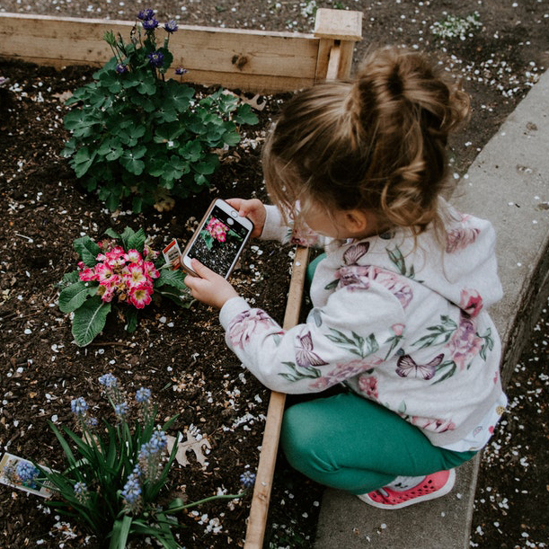 Week Seven:Working in the Garden - July 29 ‐ August 2A fun and physical week of working in the garden with herbs, plants, natural and found objects. Campers will go looking for their green thumbs this week.