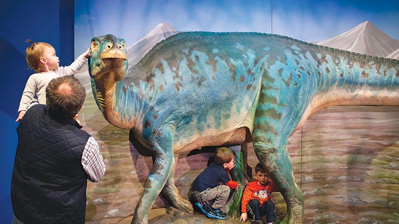 Dinosaurs_homepage_Exhibit.jpg