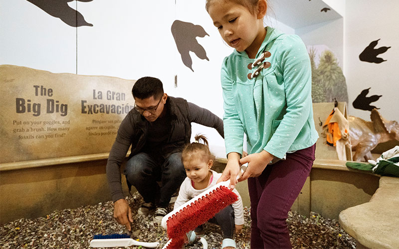 - Ancient Excavators: Kids dig for teeth and fossil specimens, and try to identify the mystery fossils!Dino Disco: Grab a dinosaur mask, and show off your moves with the whole family!Join us for the Dino Days of Summer! Bay Area Discovery Museum Members receive free admission to these special weekends. Dino Days of Summer activities are included in the regular price of admission.