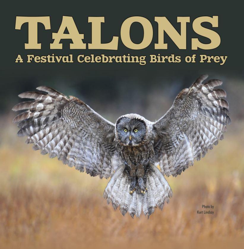 Talons_photo_by_Kurt_Lindsay2.jpg