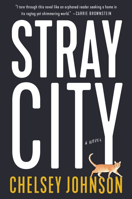 Stray City - By Chelsey JohnsonTwenty-three-year-old artist Andrea Morales escaped her Midwestern Catholic childhood—and the closet—to create a home and life for herself within the thriving but insular lesbian underground of Portland, Oregon. But one drunken night, reeling from a bad breakup and a friend's betrayal, she recklessly crosses enemy lines and hooks up with a man. To her utter shock, Andrea soon discovers she's pregnant—and despite the concerns of her astonished circle of gay friends, she decides to have the baby.A decade later, when her precocious daughter Lucia starts asking questions about the father she's never known, Andrea is forced to reconcile the past she hoped to leave behind with the life she's worked so hard to build.A thoroughly modern and original anti-romantic comedy, Stray City is an unabashedly entertaining literary debut about the families we're born into and the families we choose, about finding yourself by breaking the rules, and making bad decisions for all the right reasons.