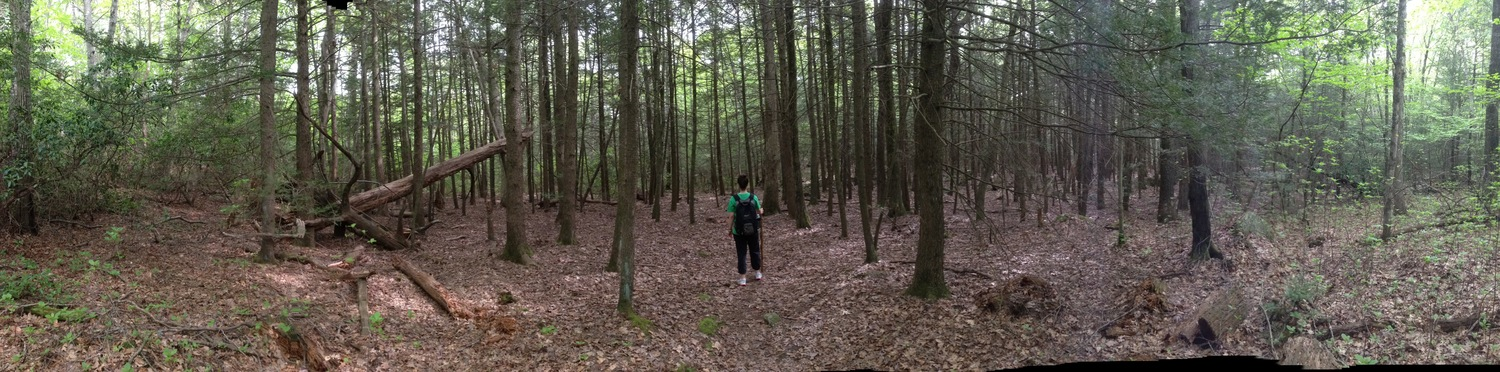 Hiking in Rhode Island