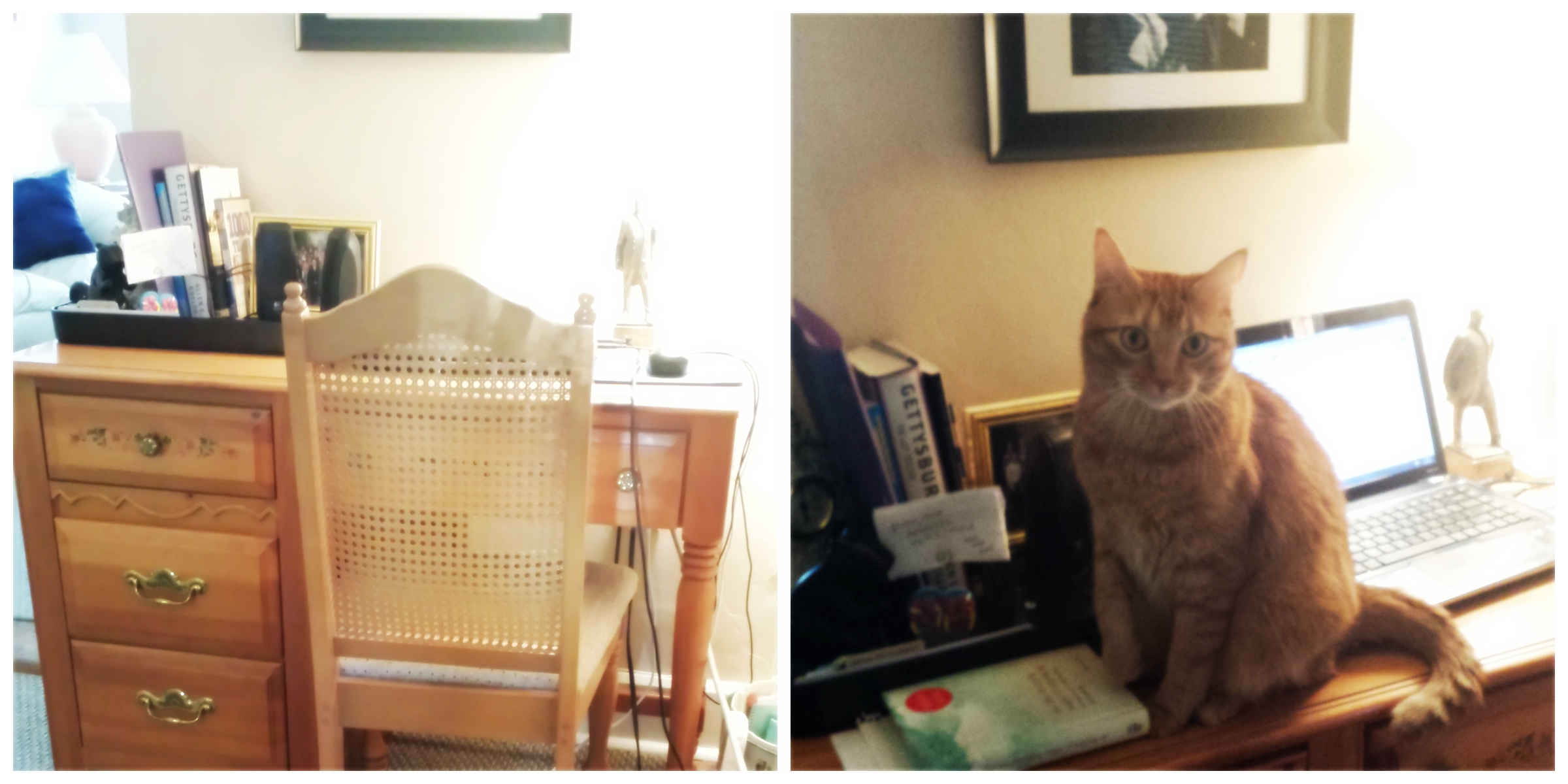 My writing desk. The Curious Cat is pretending he read the book, too.
