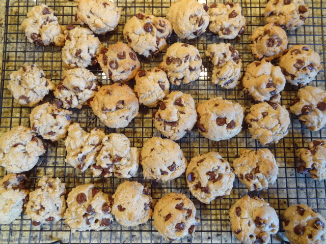 Lesley's Low Fat Chocolate Chip Cookies