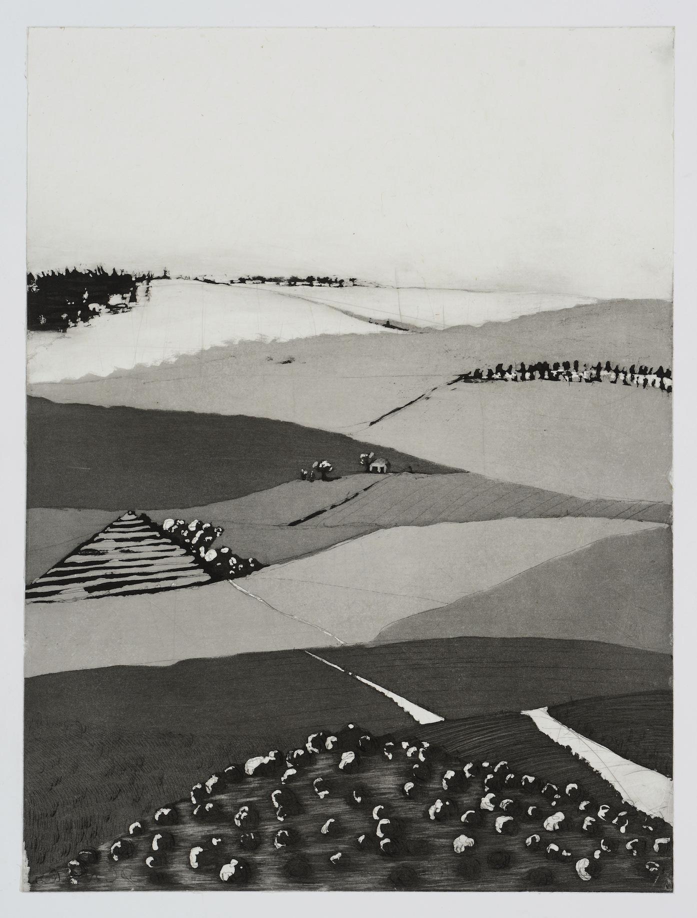 Imaginary landscape: aquatint 19x14 2012