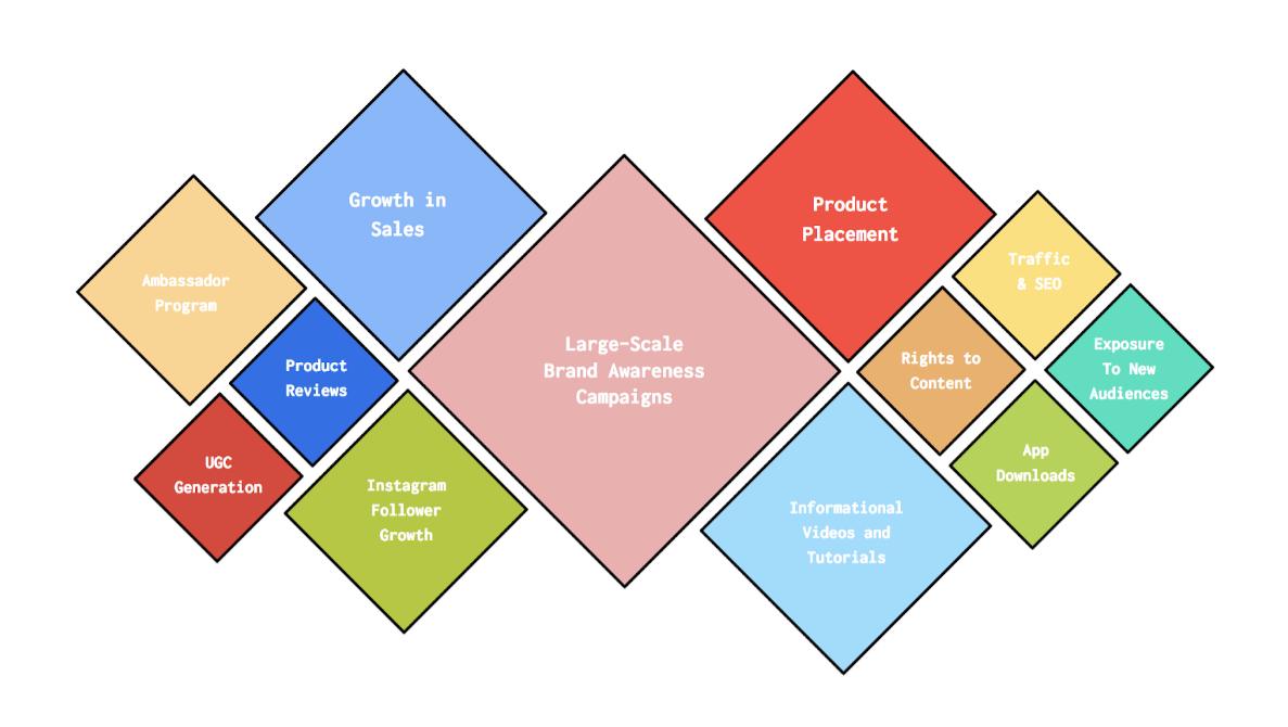 Graphic of Influencer marketing campaign goals - The Shelf