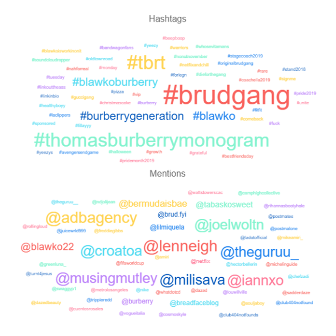 chart of most used hashtags and mentions from Blawko on Instagram.png