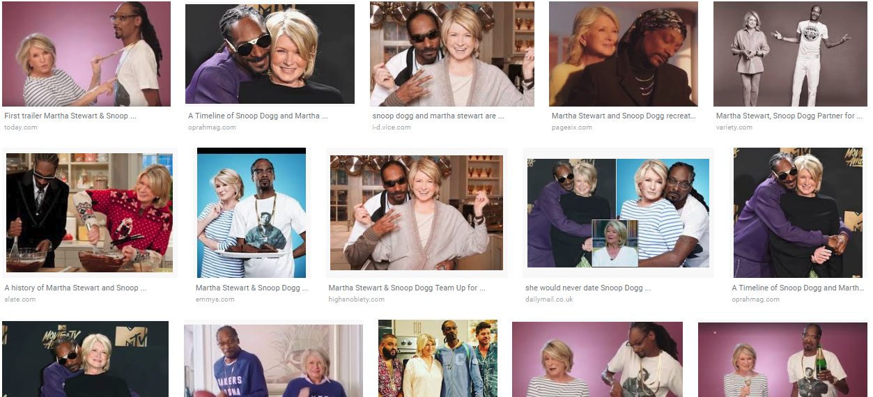 When I Googled Martha and Snoop, I thought I'd get the logo for their cooking show or something. Do these results make anyone else feel a little weird about what they're seeing? What is that fourth one in the top row? Seriously, what IS that? And dude, is that DJ Khaled in the bottom row?