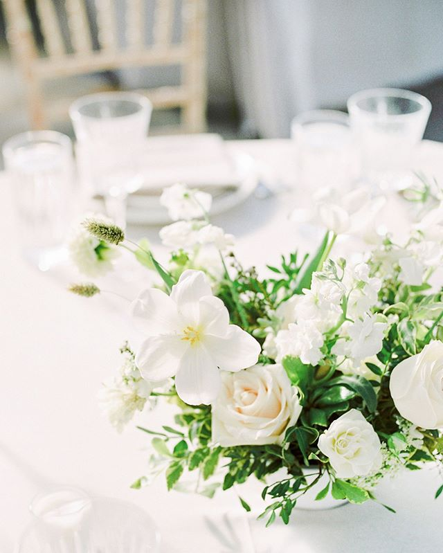 Designing this classic, timeless, monochromatic wedding with the most amazing team was a highlight of our 2020 season. ⠀⠀⠀⠀⠀⠀⠀⠀⠀ ⠀⠀⠀⠀⠀⠀⠀⠀⠀ photo @kristynharderpbotography⠀⠀⠀⠀⠀⠀⠀⠀⠀ florals @fallforflorals⠀⠀⠀⠀⠀⠀⠀⠀⠀ rentals @modernluxerental