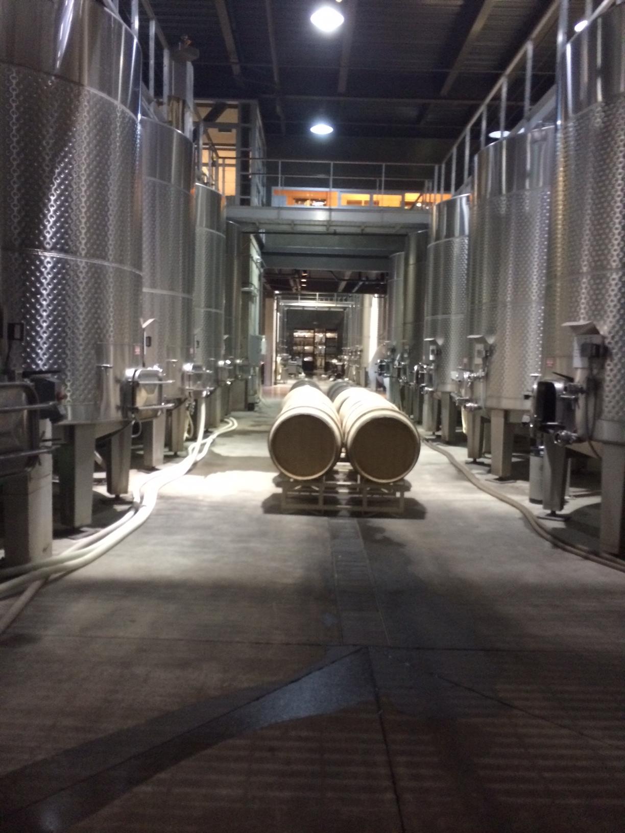 Fermentation happening in stainless steel tanks.