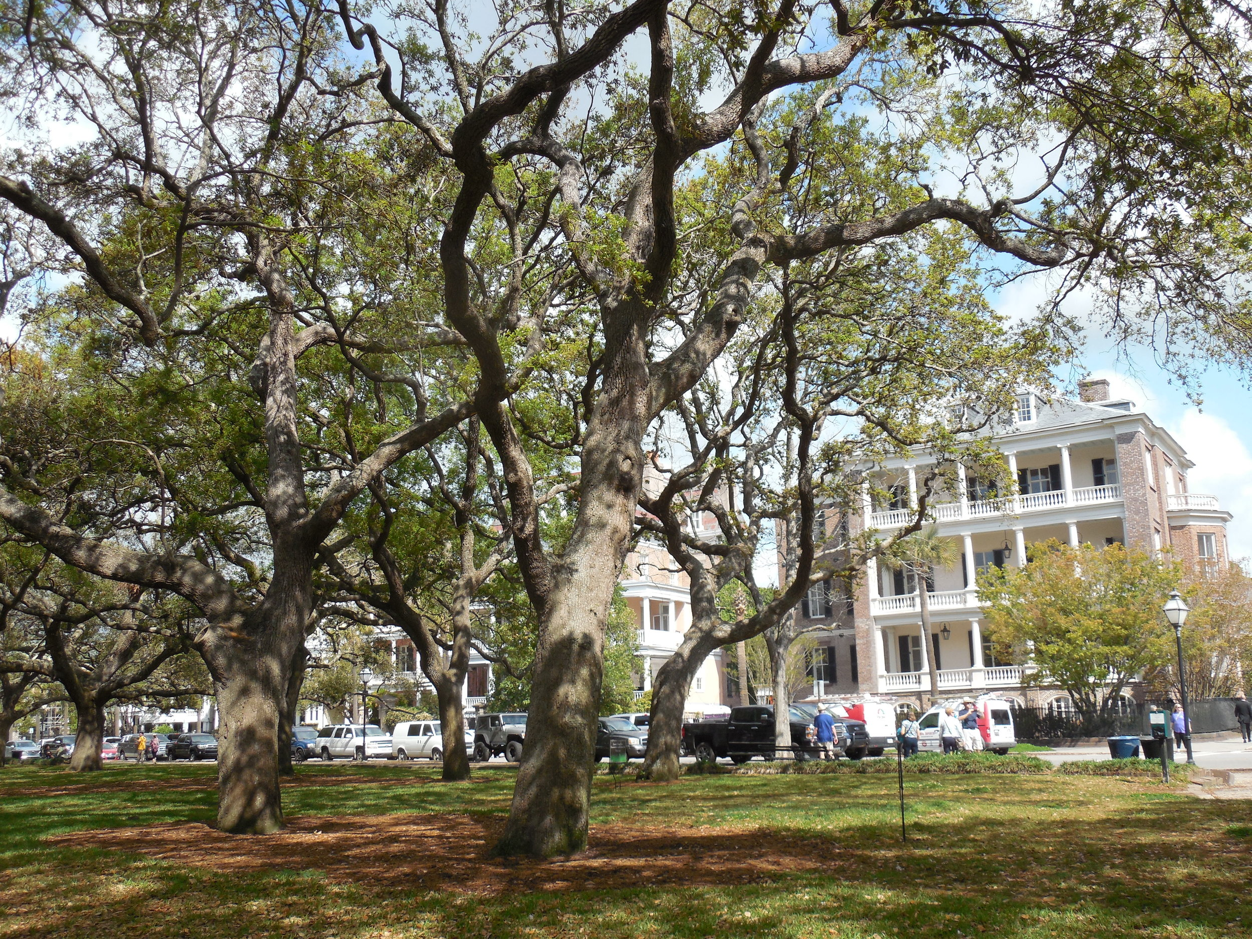 CC Charleston, south of Broadstreet, where African Americans still cannot buy property