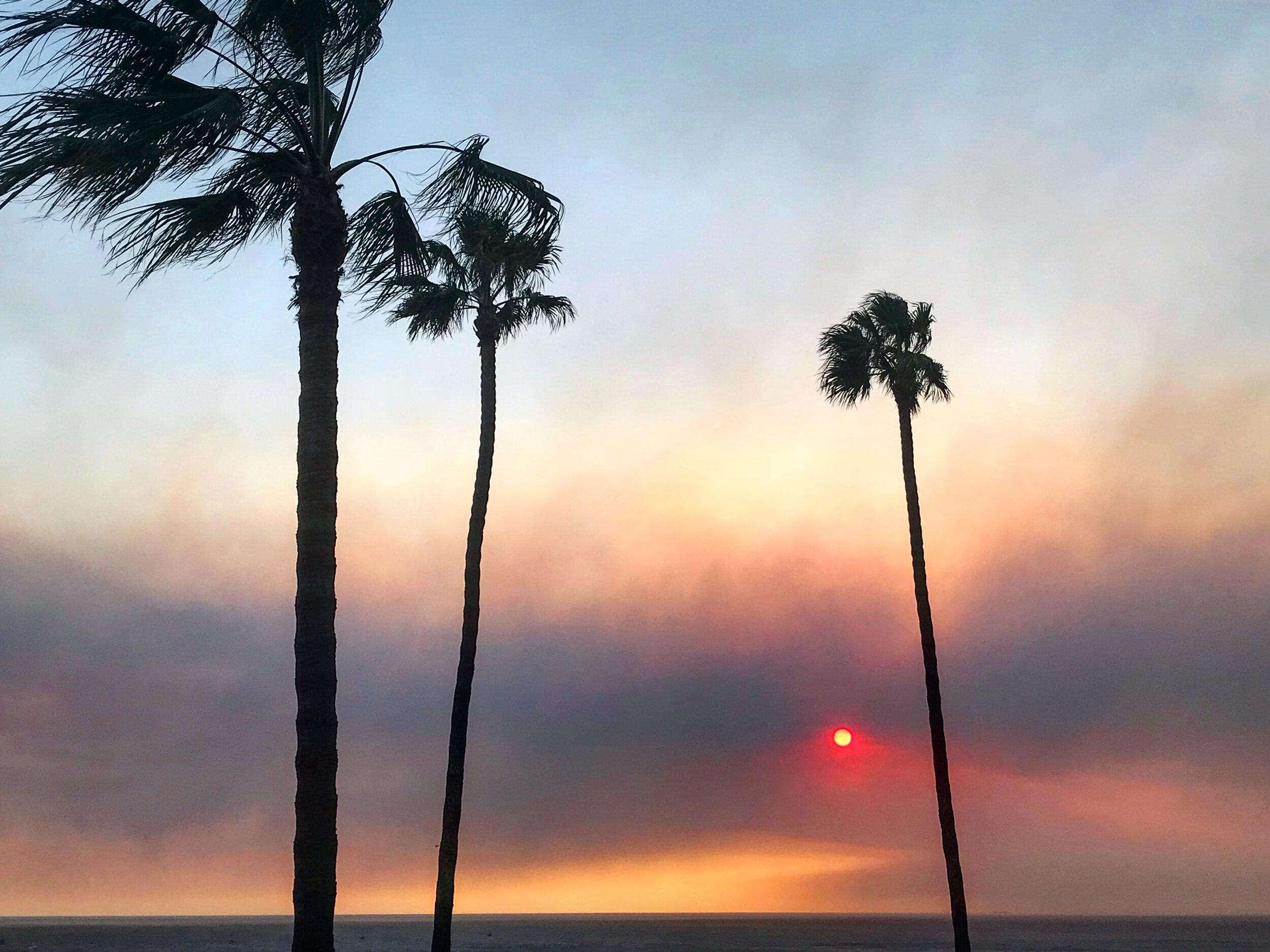 4:25pm - November 8, 2018 - the smell of smoke grew potent and ash began to fly through the air outside. (📷: Lisa Butala Zabaldo)