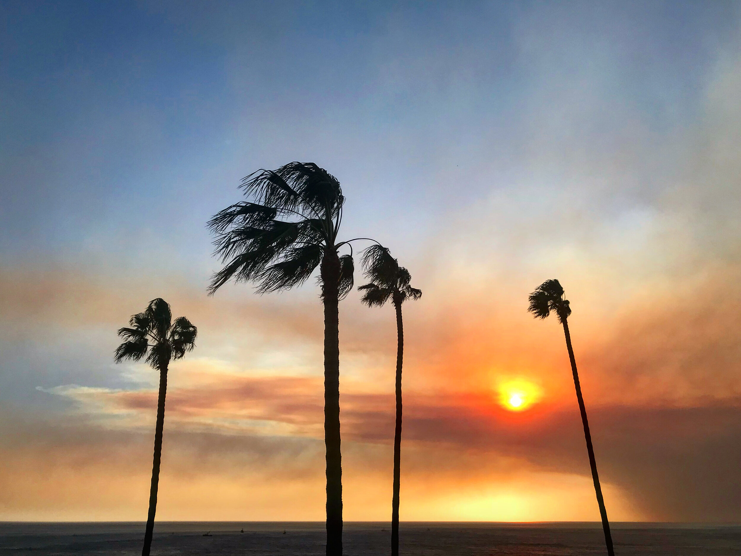 4:03pm - November 8, 2018 - Smoke from the Hill Fire in Ventura County making its presence known over the Pacific Ocean. (📷: Lisa Butala Zabaldo)