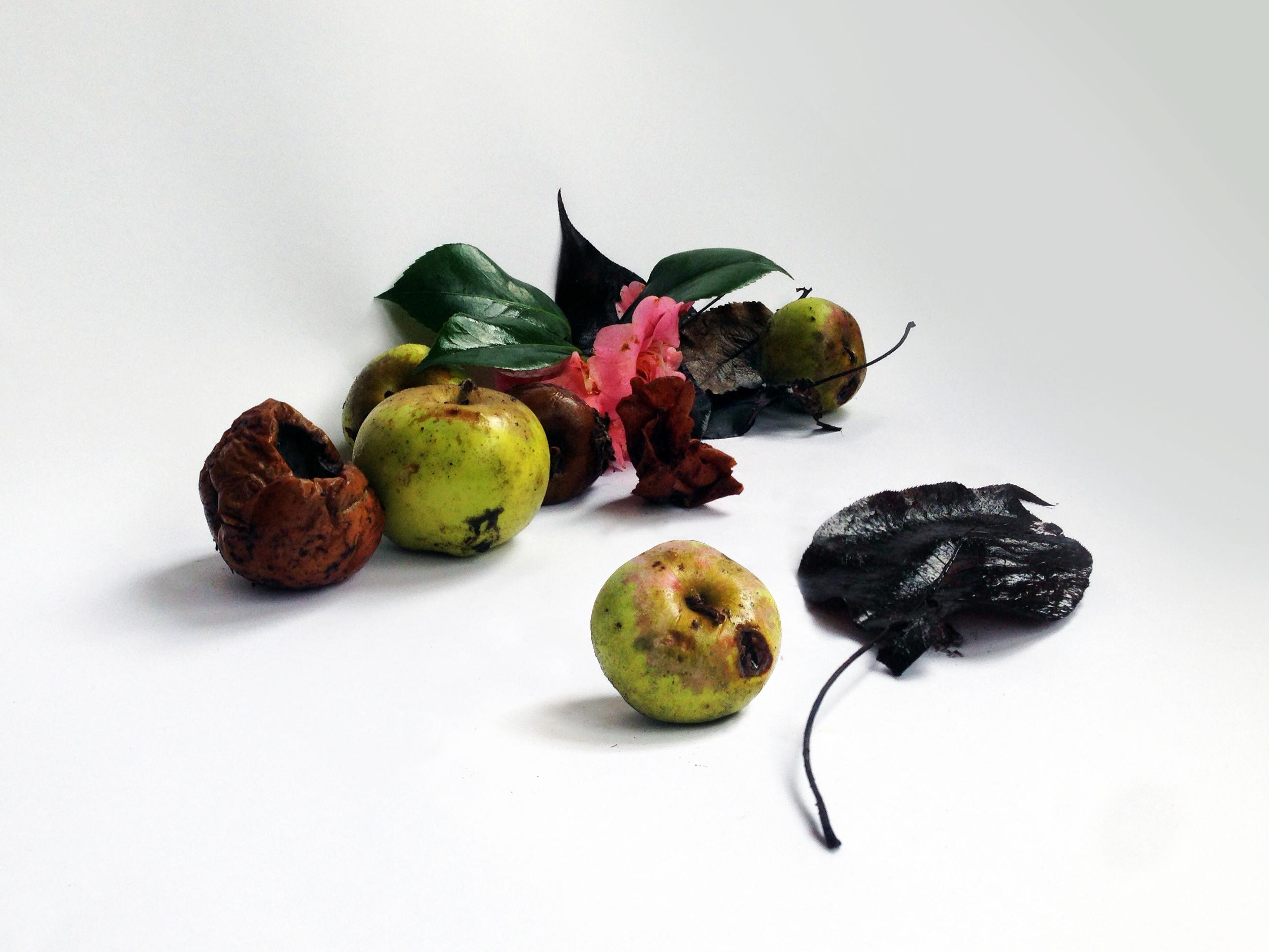 rottenfruits.jpg