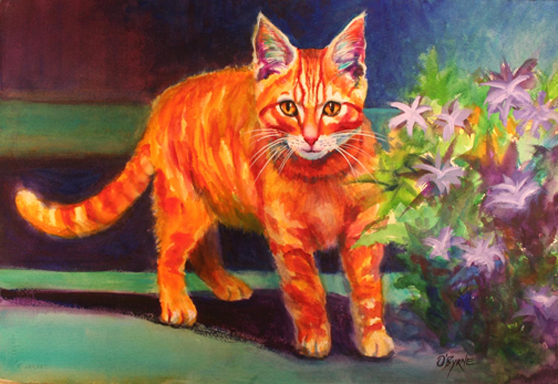 orange kitten 1500.jpg
