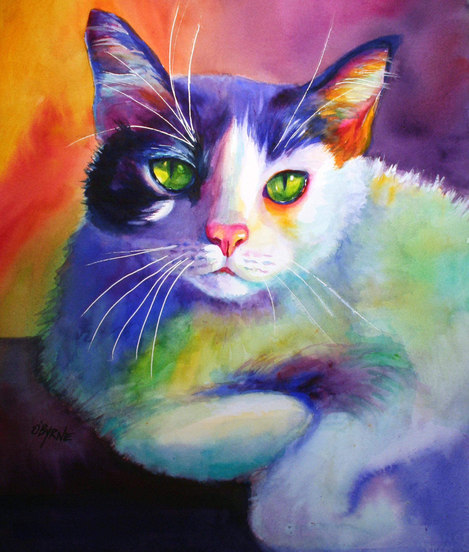 Norman Cat1500.jpg