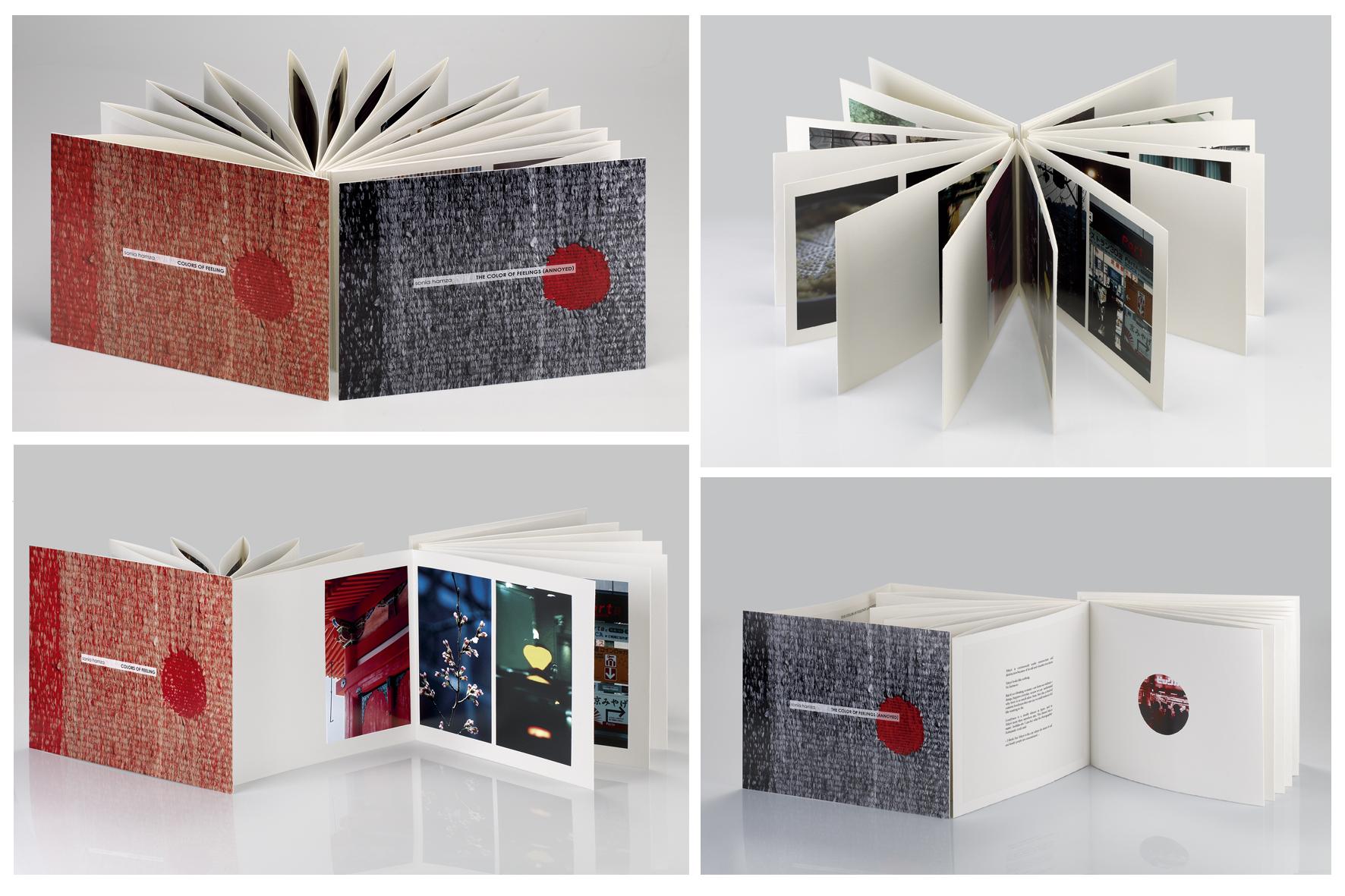 Présentation du livre en horizontal.jpg