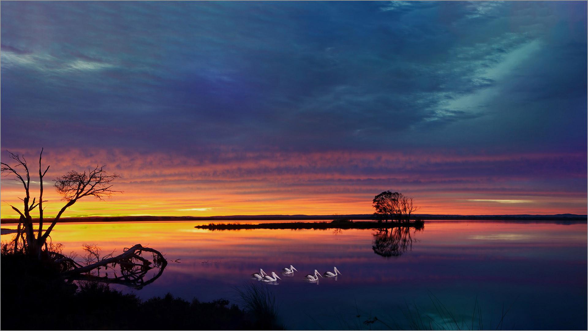 Sunrise at Island Pt.