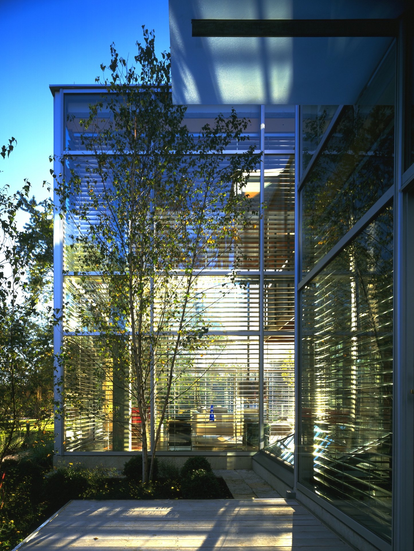Glass House (13).jpg