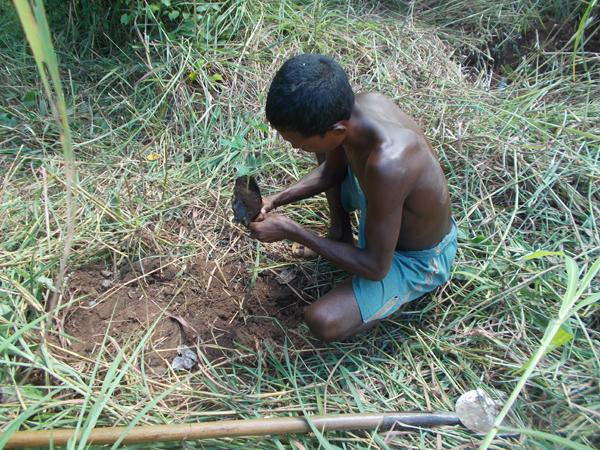 tree planting2.JPG
