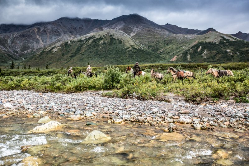 Horses are the most reliable form of transportation in the backcountry.