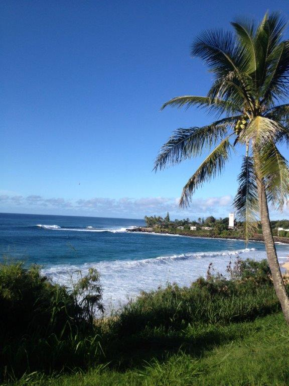 Famous Waimea Bay, where in the winter, the waves get to be 30 to 60 feet high at times along with brave/crazy surfers trying to ride hem. We will watch from the safety of the beach. We keep $1,000 Fujinon Binoculars in each van.