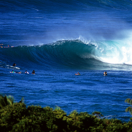 Big Waves on the North Shore