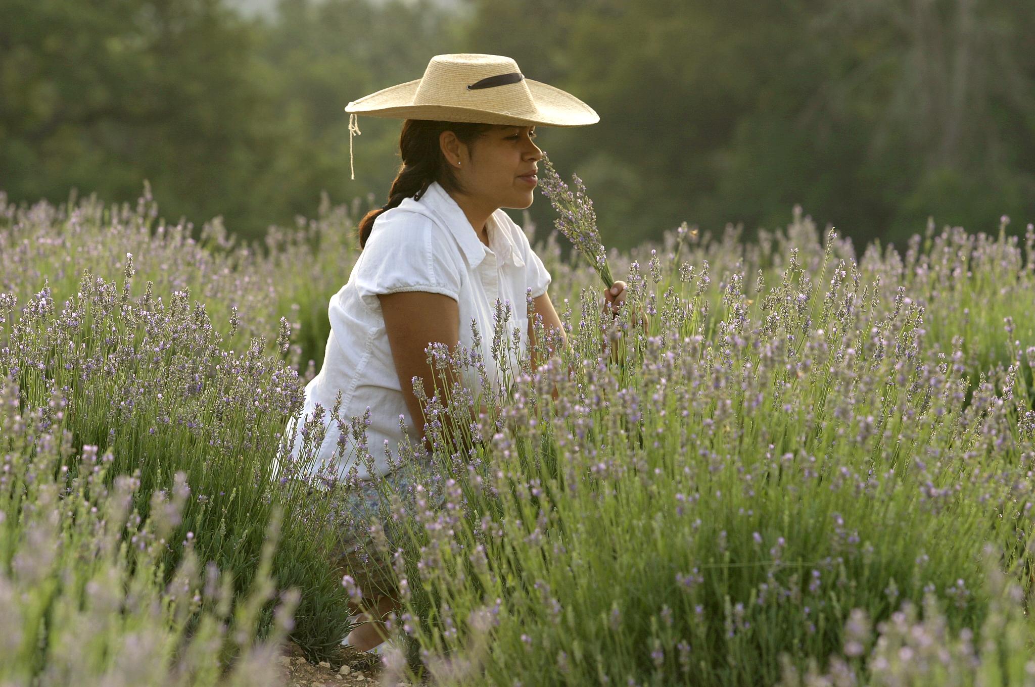 Girl in Field 1.jpg
