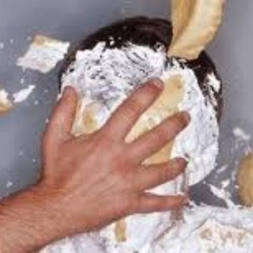 pie in face 2.jpg