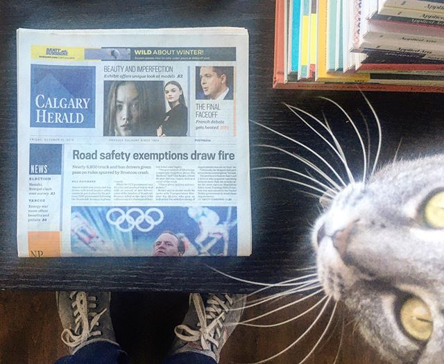 I couldn't help myself - Thank you again @calgaryherald for the front page teaser. #dontyoufuckinlovemycat