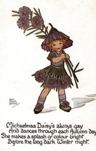 michaelmas+daisy.jpg
