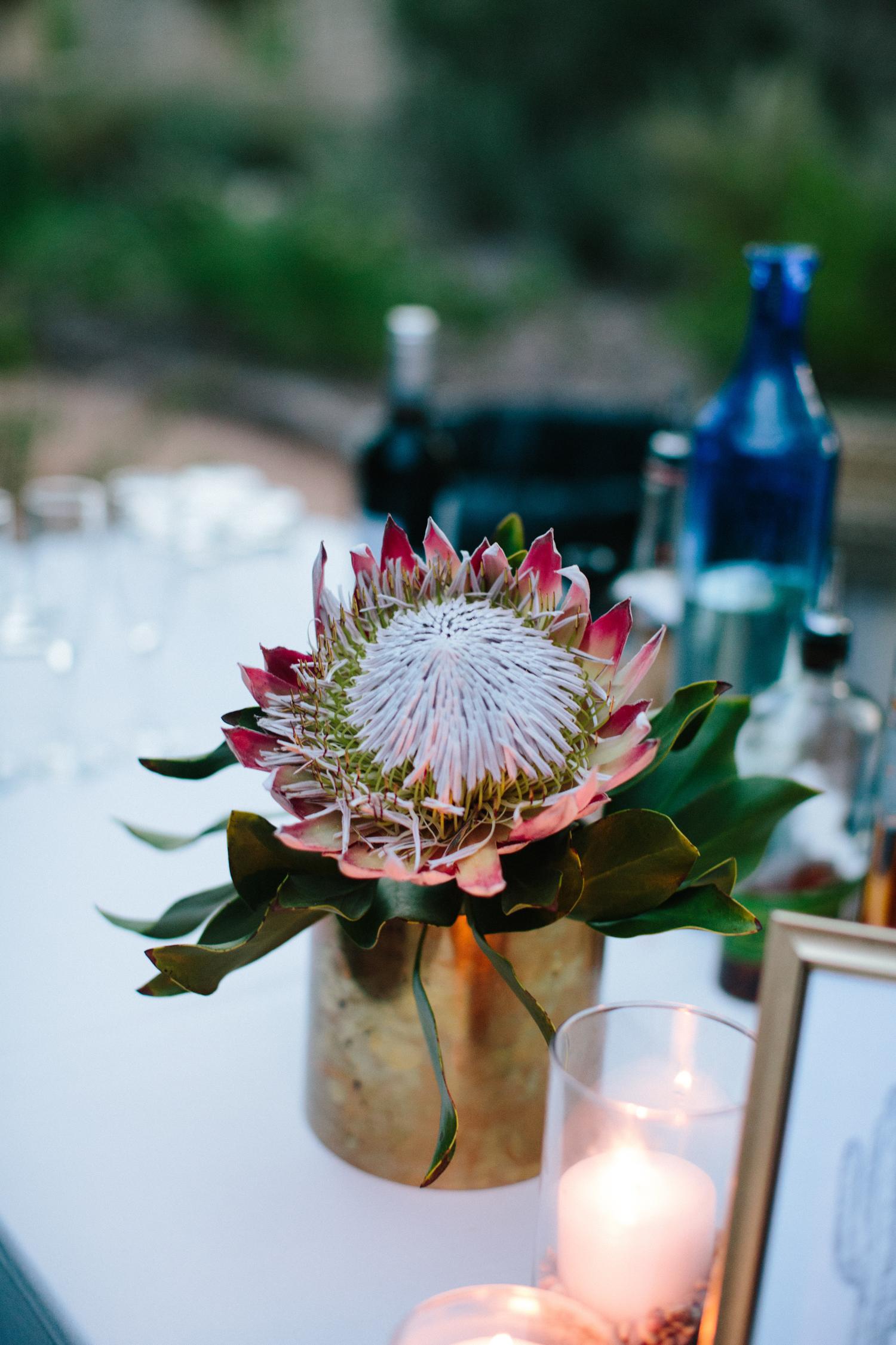 Kate_Jon_Wildflower_Center_Wedding00045.jpg