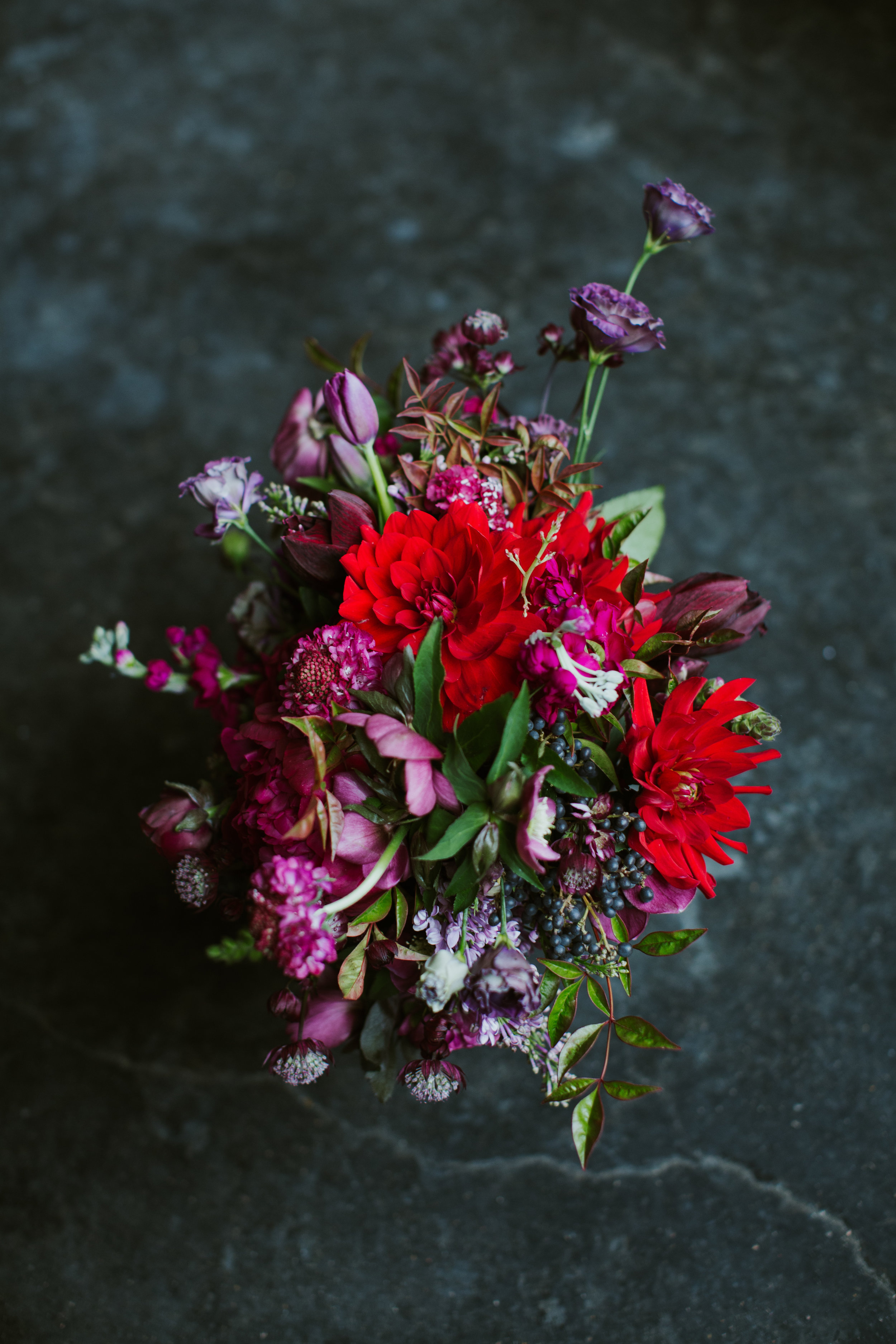 Paige-Newton-Intimate-Wedding-Photography-Malverde-Wedding-Florist.jpg.jpg