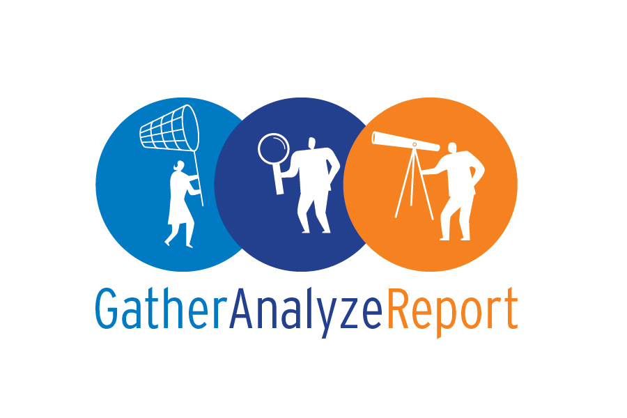 GATHER ANALYZE REPORT-01.jpg