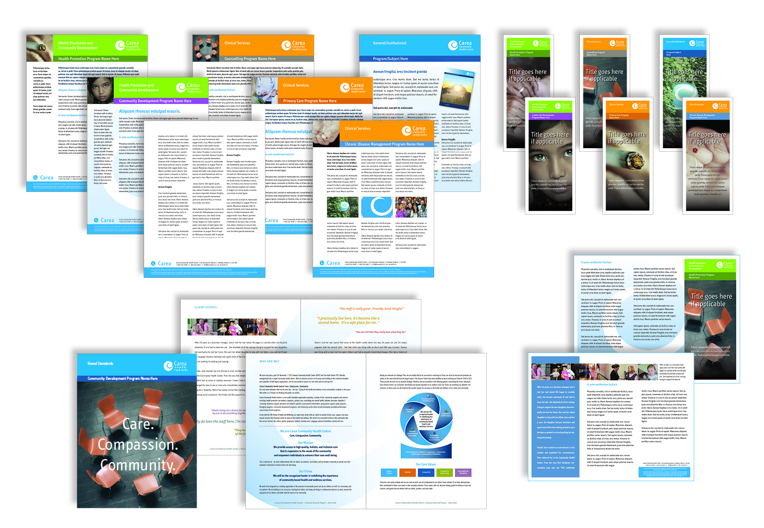 Carea Brochure layouts.jpg