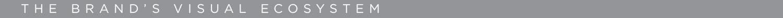 BRAND'S VISUAL ECOSYSTEM-01.jpg