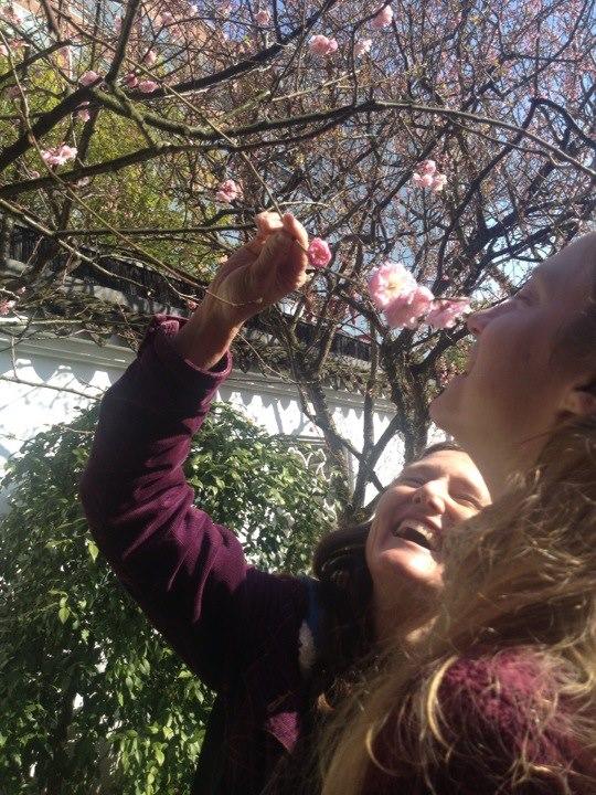 Teaching in the Lan Su garden in Portland