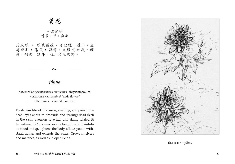 Divine Farmer medicinal, júhuā, and illustration.