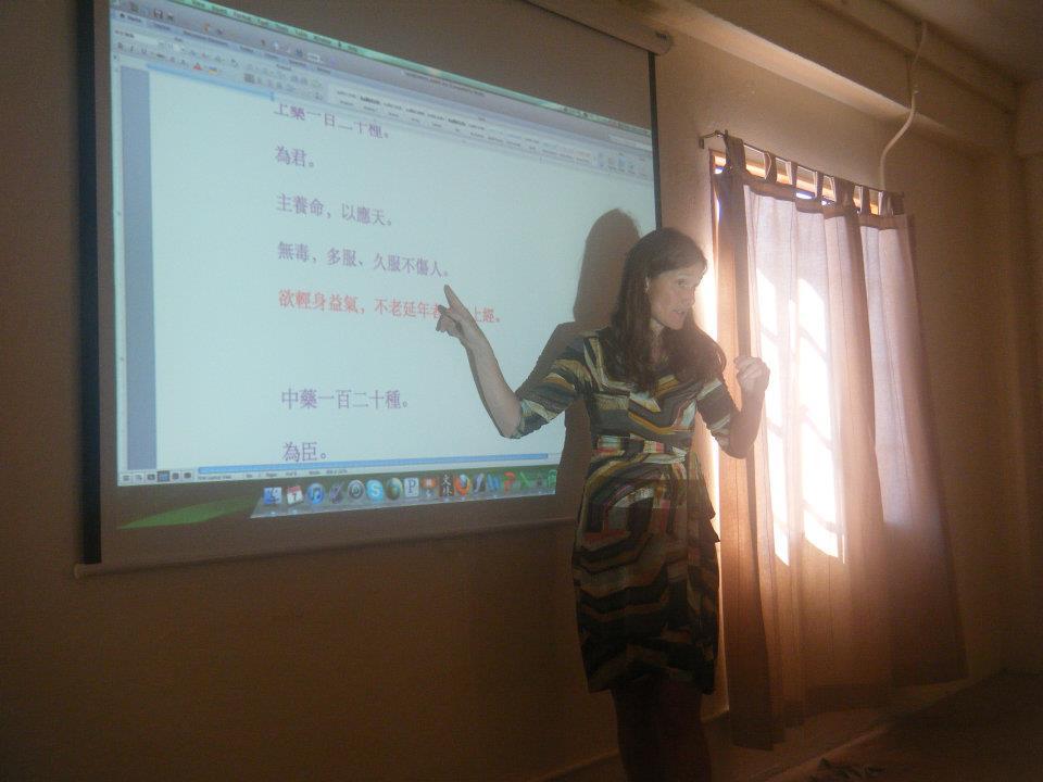 Sabine Wilms teaching at Fairfax.