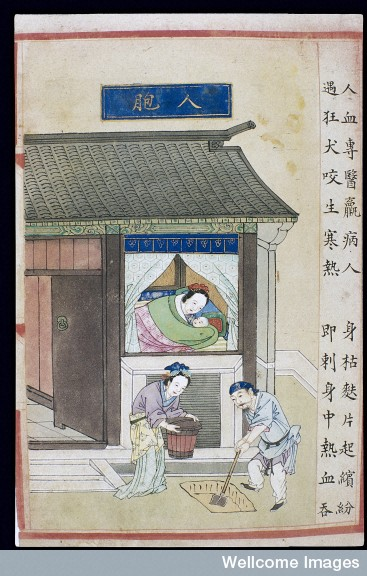 Painting taken from the supplement to Buyi Lei Gong's Guide to the Preparation of Drugs (1591 edition), from  Wellcome Images .