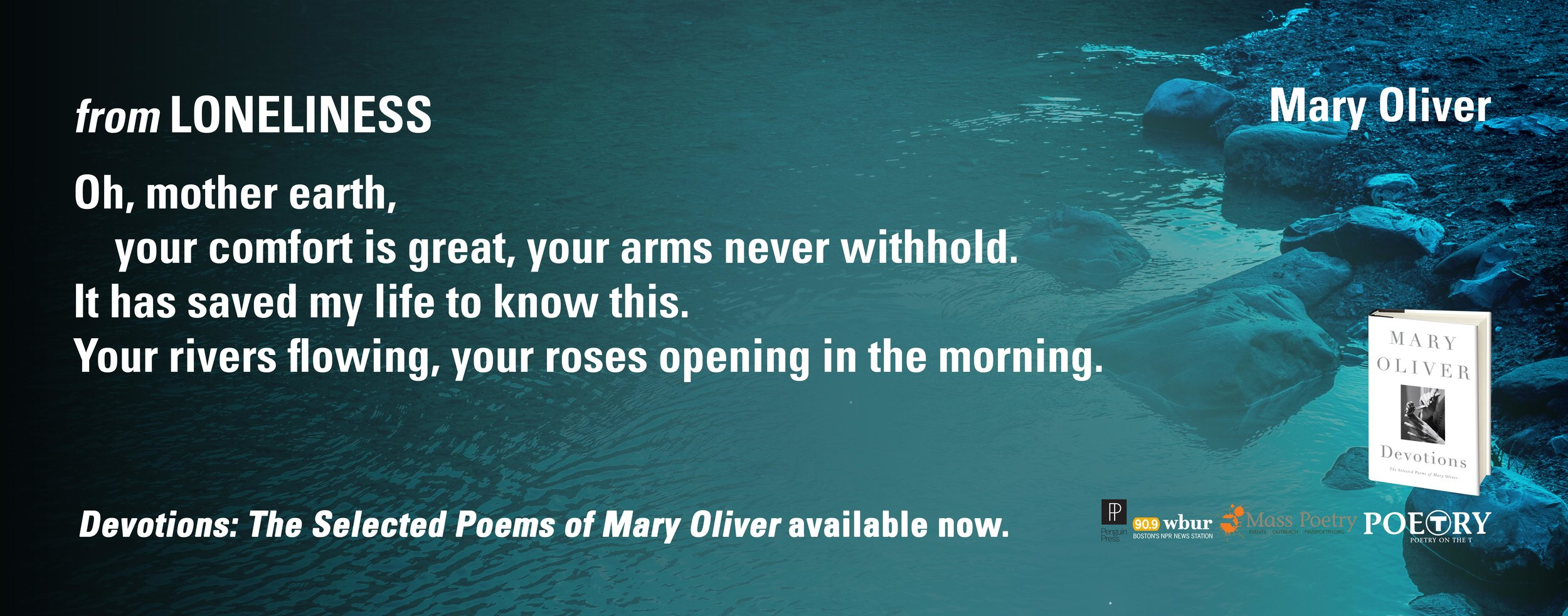 """Mary Oliver, From """"Loneliness"""""""
