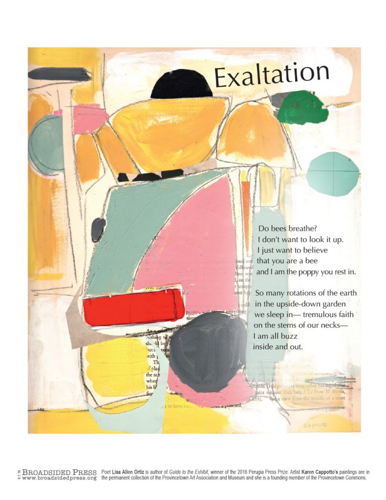 178-Exaltation-Cappotto-Ortiz-BroadsidedPress-790x1022.jpg
