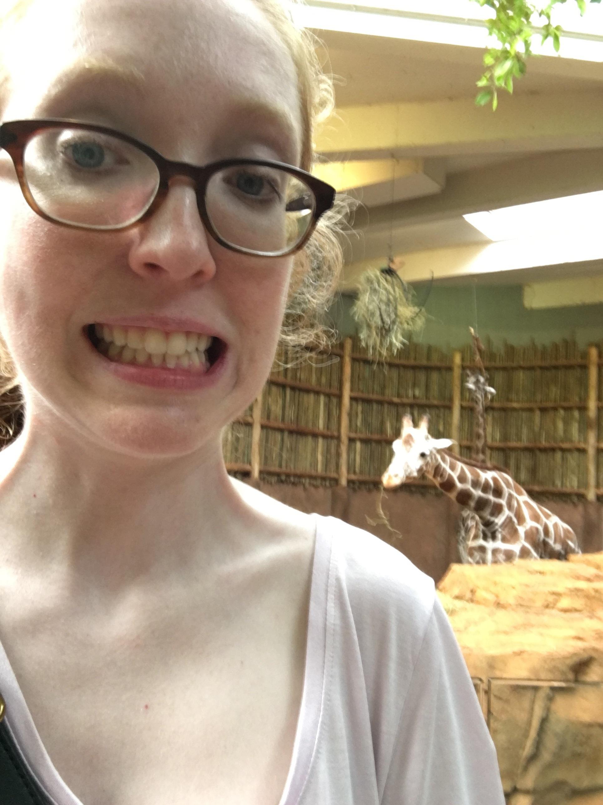 Haaaaaay giraffe.