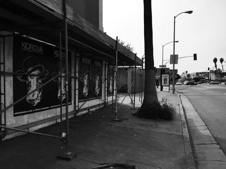 Hollywood+and+Van+Ness.jpg