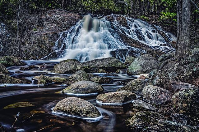 """""""No matter what you do, your job is to tell your story.""""- @garyvee . . . #instagood #keepitwild #wanderlust #keepexploring #hiking #neature #waterfall #chasingwaterfalls #waterfall #waterfallsfordays #lifeofadventure #naturephoto #shareyourweather #landscape_captures #awesome_earthpix #natureaddict #rsa_rural #awesomeearth #nature_wizards #a7riii  #sonyimages #sonyalpha #sonyalphasclub #sonyphotogallery #ig_northbay #northbay #duchesnayfalls #tnbphotocontest #tourismnorthbay #todayplaces"""
