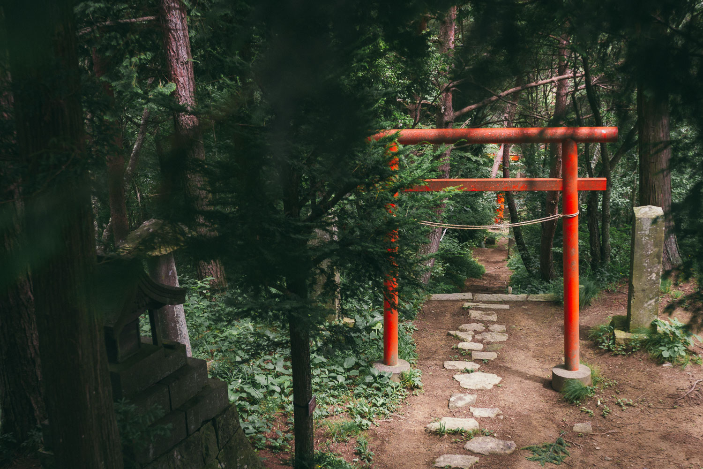 Taroyama Shrine torii near the summit of Mount Taro, Ueda, Nagano, Japan