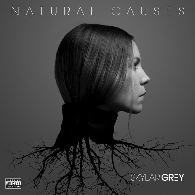 "Skylar Grey - Natural Causes    Mixer   ""Intro - Wilderness,"" ""Jump""   Engineer   ""Intro - Wilderness,"" ""Jump,"" ""Real World,"" ""Picture Perfect,"" ""Closer""    Listen"