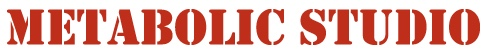 Metabolic+logo_lg.jpg