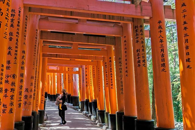 Journey through the 10,000 Torii gates, a sacred piece of history in Kyoto's oldest shrine  #kyoto #japan #beautifuldestinations #fushimiinari