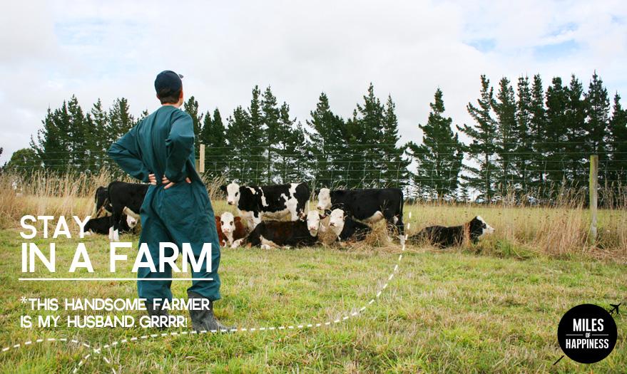 Stay in a Farm